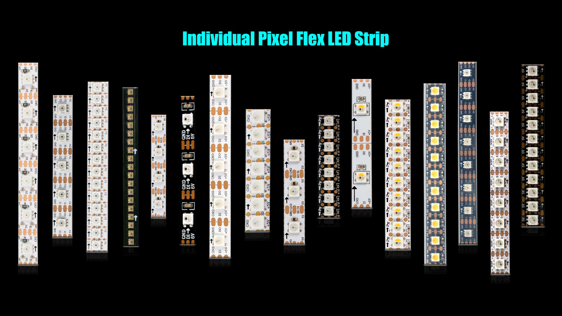 Individual Pixel Flex LED Strip